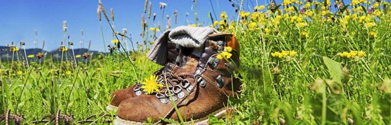 Salzburg Schuhe