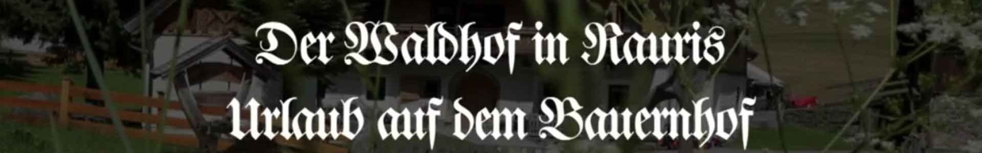 Waldhof Video