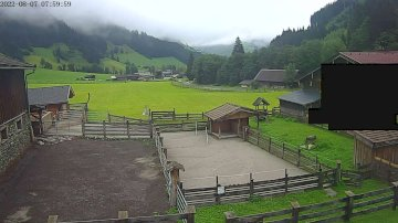 Waldhof Live WebCAM